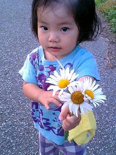 散歩のお供